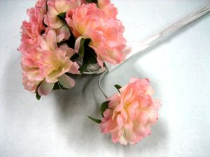 ミニマムブッシュ ピンク 1袋